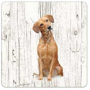 Creatief Art Hond labrador blond | Houten Onderzetters 6 Stuks