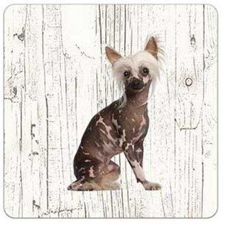 Creatief Art Hond Naakthond   Houten Onderzetters 6 Stuks