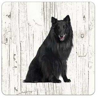 Creatief Art Hond Groenendaeler | Houten Onderzetters 6 Stuks