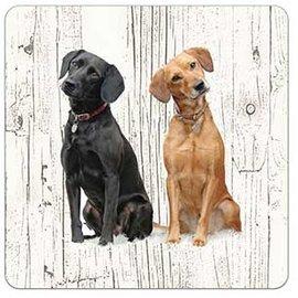 Creatief Art Hond Labrador | Houten Onderzetters 6 Stuks