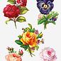 Creatief Art 3D Glangslak Prenten - Bloemen en Rozen 01