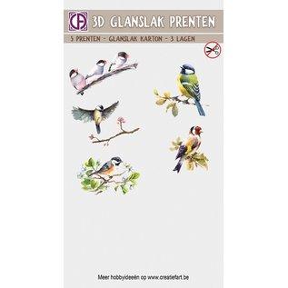 Creatief Art 3D glanslak Prenten - Vogels en bloemen 02