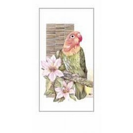 Creatief Art Pakket 6st SWR133    papegaai 2