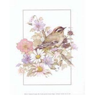 Creatief Art Pakket 6x SW vogel + bloemen