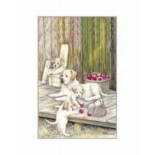 Creatief Art Pakket 6x SWR 3-0125 honden met appels