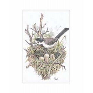 Creatief Art Pakket 6x SWR 3-0131 vogel op nest
