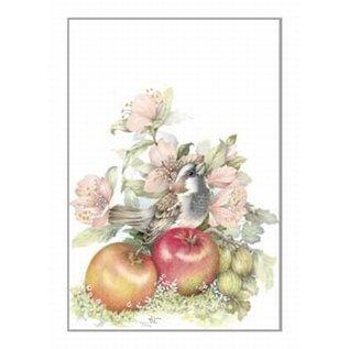 Creatief Art Pakket 6x SWR2-0039  vogel bij appels