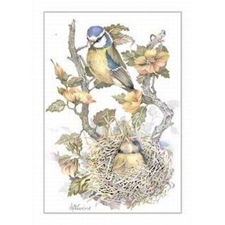 Creatief Art Pakket 6x SWR2-0098  vogels in nest