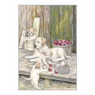 Creatief Art Pakket 6x SWR2-0125 Labradors bij appels