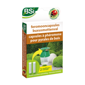 BSI Navulling Feromoonval Buxusmot 2-pack