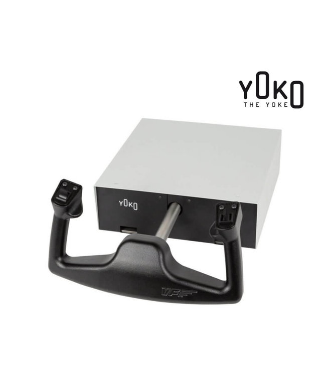 Virtual Fly Yoko