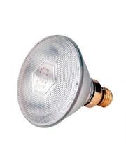 Lamp EB 175W wit Philips