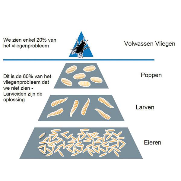 Pyramide Vliegen Agridiscounter