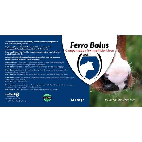 Ferro Bolus 24 stuks