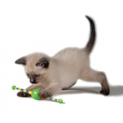 Rollend Speeltje voor Kitten