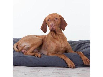 Rebel Petz Groot Basic Hondenkussen in Grijs, Taupe en Zwart