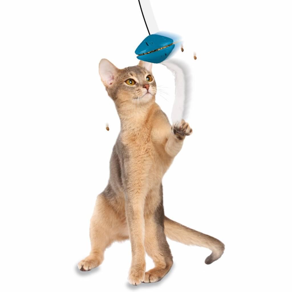 Kattenspeeltje voor Deurkozijn