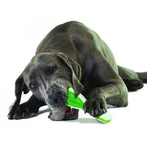 Honden Tandenborstel Speelgoed