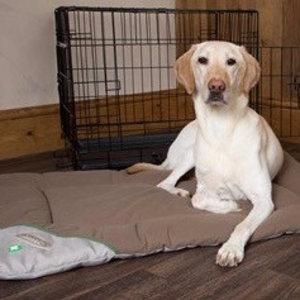 Honden Benchmat tegen Vlooien, Luizen en Teken