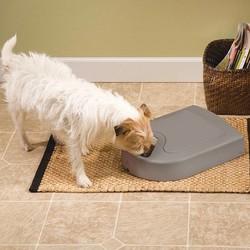 Digitale Hondenvoerbak voor 5 Maaltijden