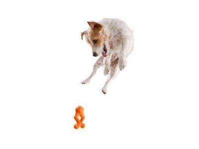 West Paw Tizzi Zogoflex - Speeltje voor actieve honden om ver te gooien - Blauw, Groen of Oranje in maat M of L