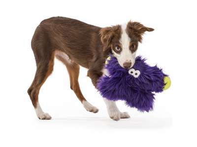 Sterke Hondenknuffel met kauwzones voor kleine honden - Rowdies Fergus - Paars, Oranje of Bruin 24x16cm - B Corp
