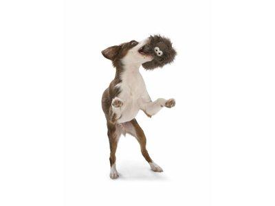 Rowdies Sterk Puppy Speelgoed Rosebud