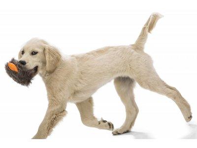 Rowdies Sterk & Wasbaar Puppy Speelgoed Rosebud - B Corp