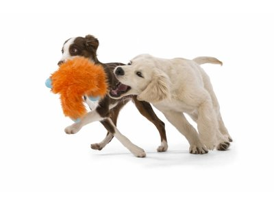 Zacht & Sterk Trek Speelgoed voor Honden - Duurzaam met speciale Kauwzones - Zogoflex Rowdies - Bruin, Oranje of Paars - B Corp