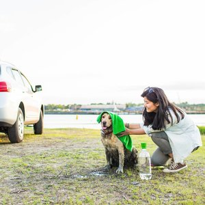 Reis Handdoek voor Honden