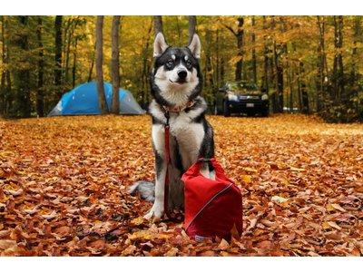 Kibble Carrier Hondenvoer en Snacks Tas
