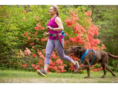Kurgo Springback Hondenriem met Bungee Effect