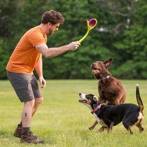Werpstok voor Honden met Disc
