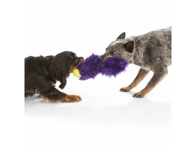 Trekspeelgoed Zacht & Duurzaam met kauwzones - West Paw Rowdies Sanders - Paars, Oranje of Bruin