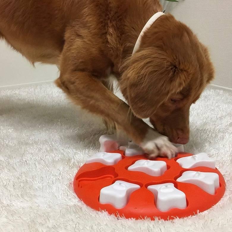 Interactieve puzzel voor Honden