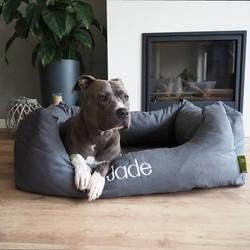 Optie: BORDUREN Hondenmand