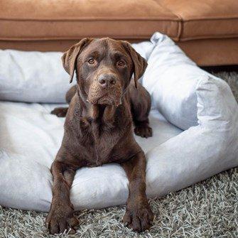Grijze Hondenmand  Zacht & Comfortabel