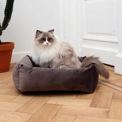 Velours mand voor Katten in 3 Kleuren