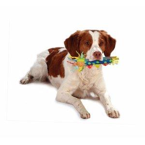 Petstages Cool Teething Stick - Verkoelend kauwspeeltje voor puppies