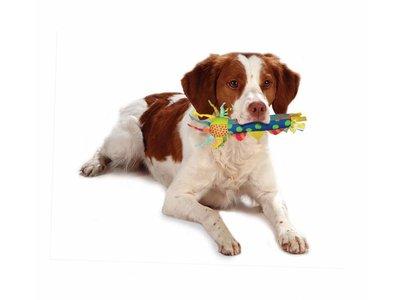Petstages Cool Teething Stick - Verkoelend kauwspeeltje voor puppies - Geschikt om in te vriezen