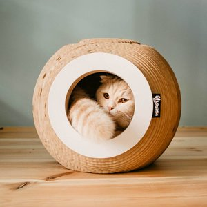 Krab Bal van karton voor Katten