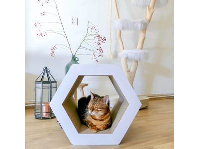 Stevig Krabmeubel voor Katten Modulair