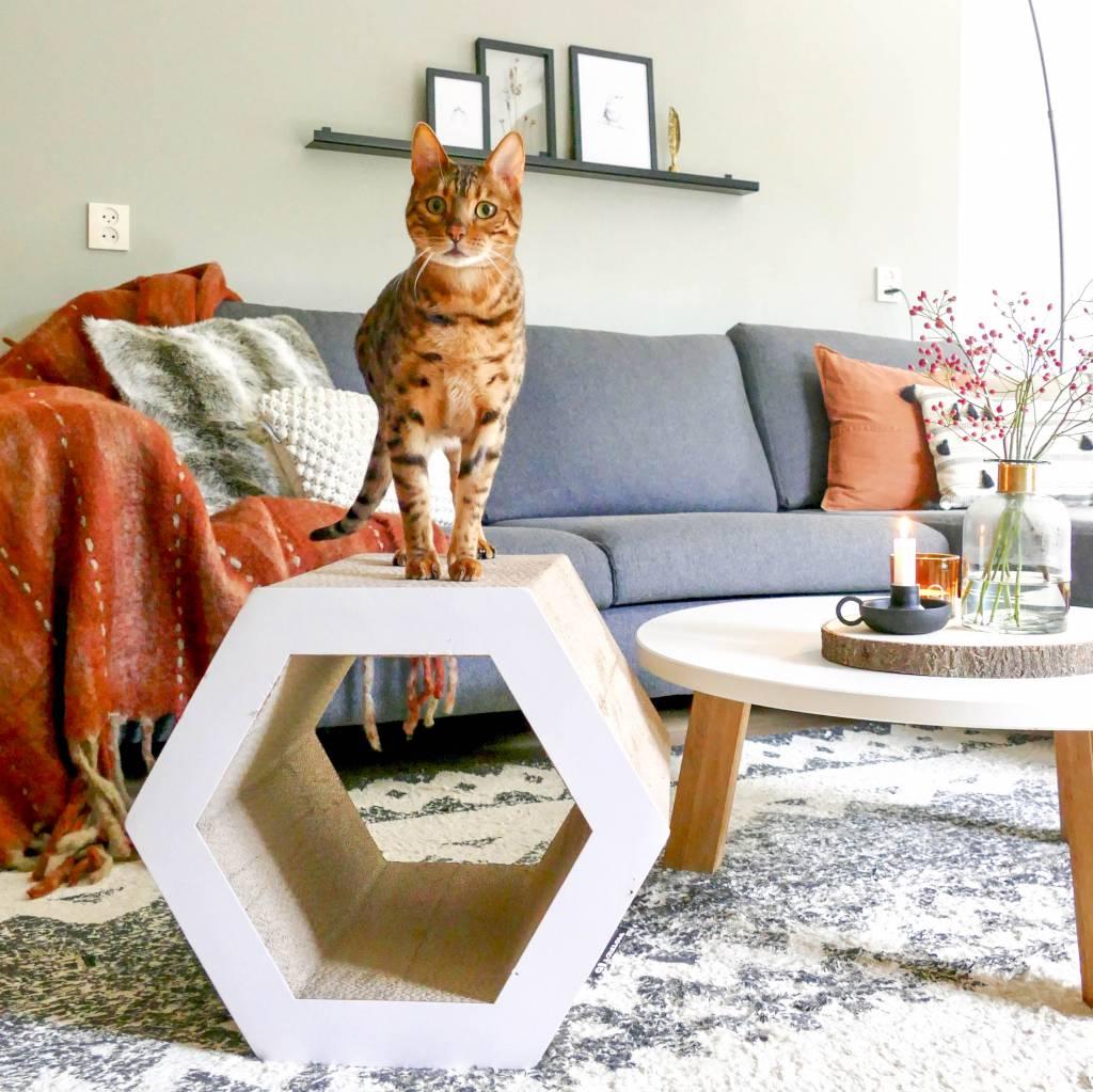 Stevig Krabmeubel voor Katten