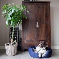 Zachte Tweed Hondenmand