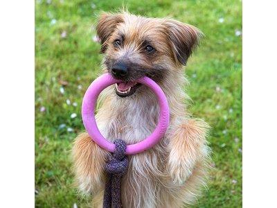 Beco Pets Speeltouw voor pups met bijtring