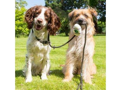 Beco Pocket - Milieuvriendelijke Poepzakjeshouder - Te bevestigen aan riem, inclusief 15 Hondenpoepzakjes - Beco Pets - in Groen, Naturel, Blauw en Roze
