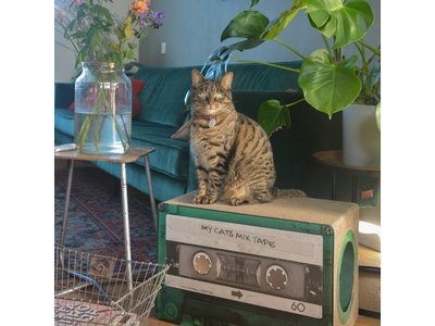 Trendy Retro Krabmeubel van duurzaam karton - District 70 Mixtape - Omkeerbaar in Zwart of Emerald - 54x35x31cm