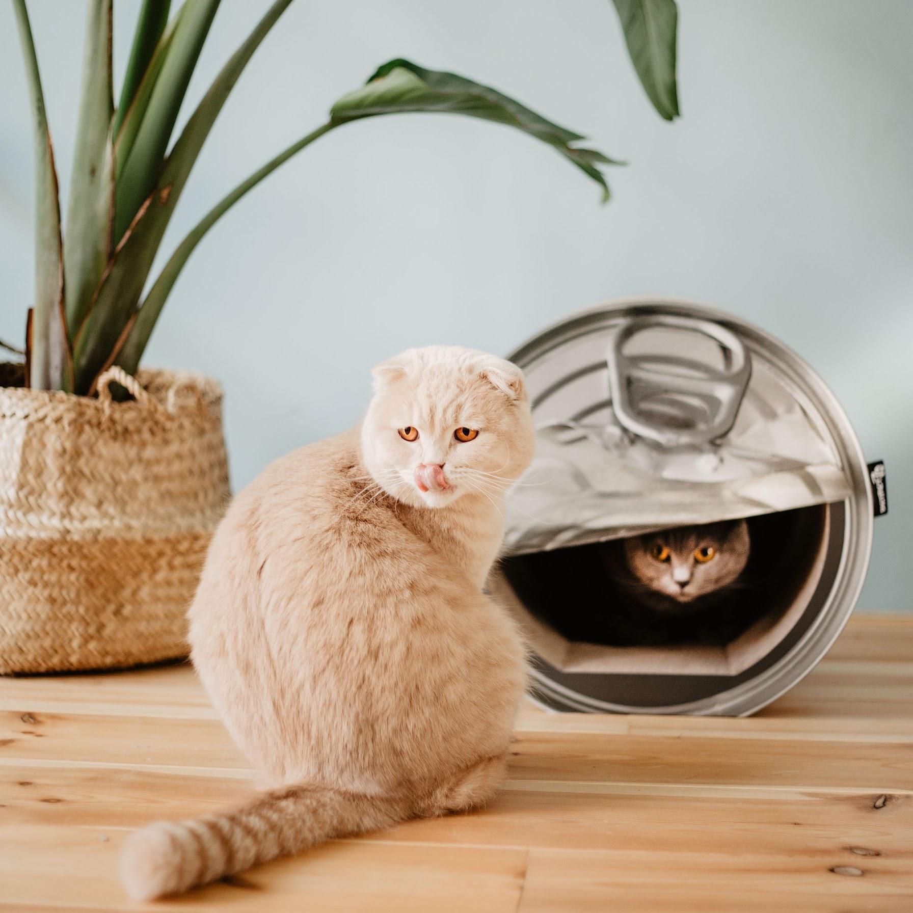 Krabmeubel voor Katten Conservenblik
