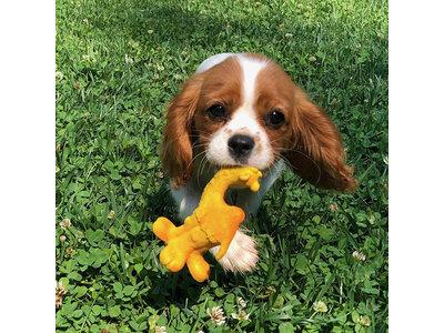 Lanco Kameel Medium speelgoed (puppy's en kleine honden)