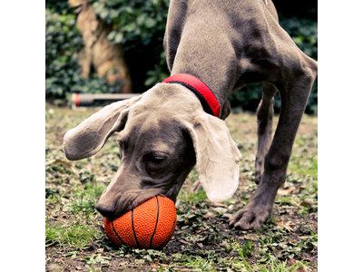Lanco Basketbal speelgoedbal Groot